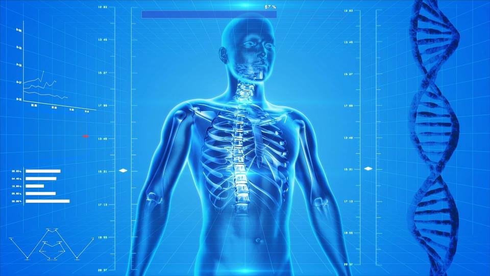 medical malpractice skeleton